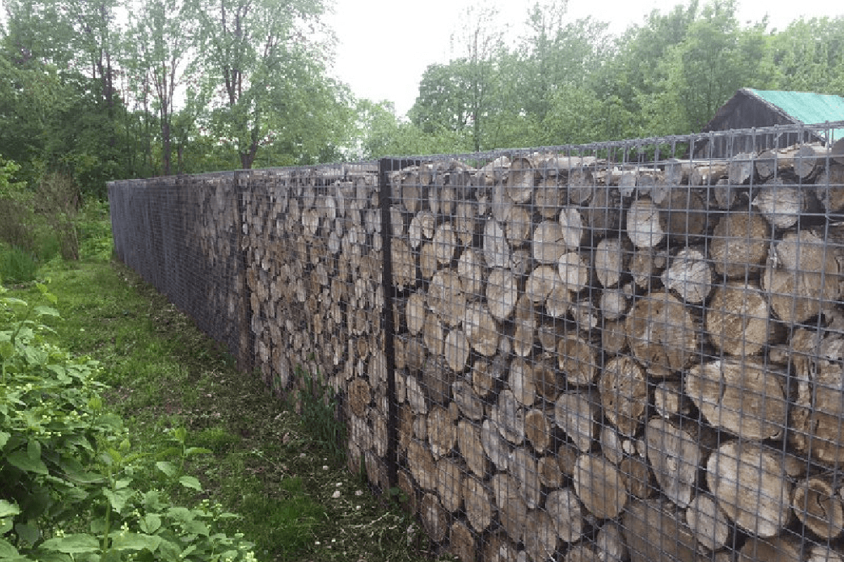 Забор из габионов с деревом
